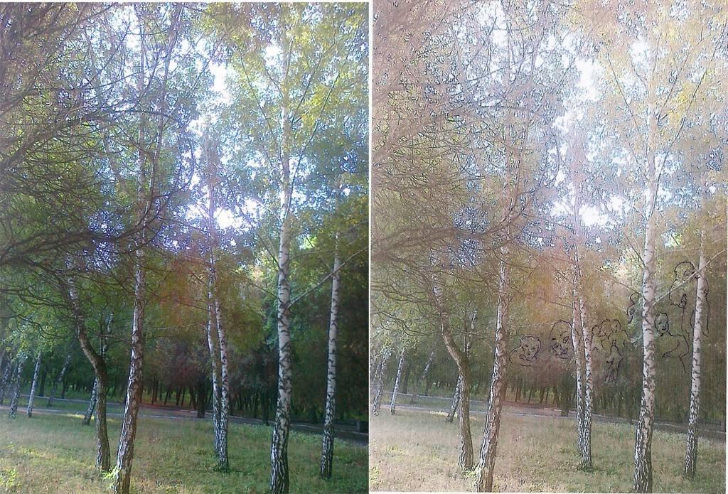 Чужие жизни на фоне деревьев